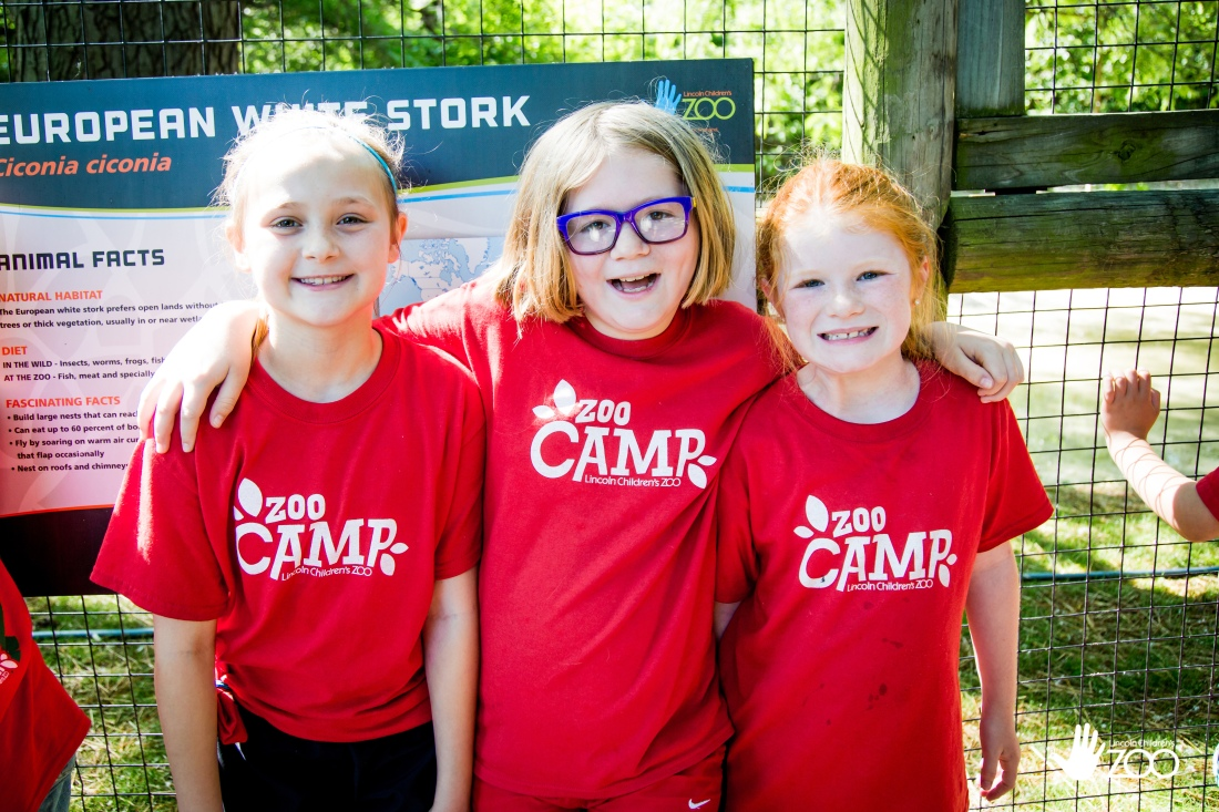 camp_week-one_2017_edited (1 of 4)