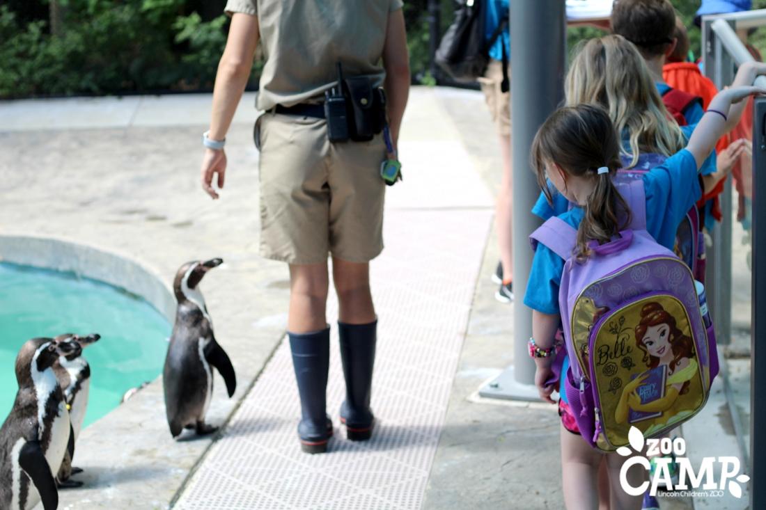 Camp_penguins_4-5_0307 copy