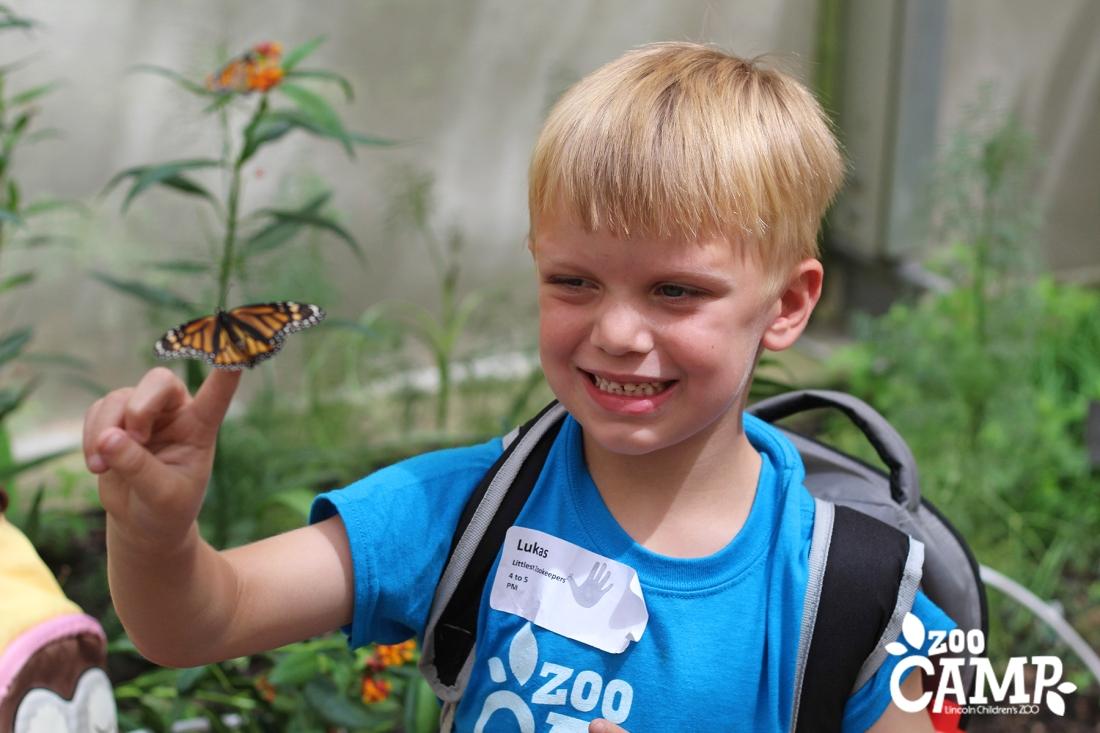 Camp_butterflies_4-5_1340 copy