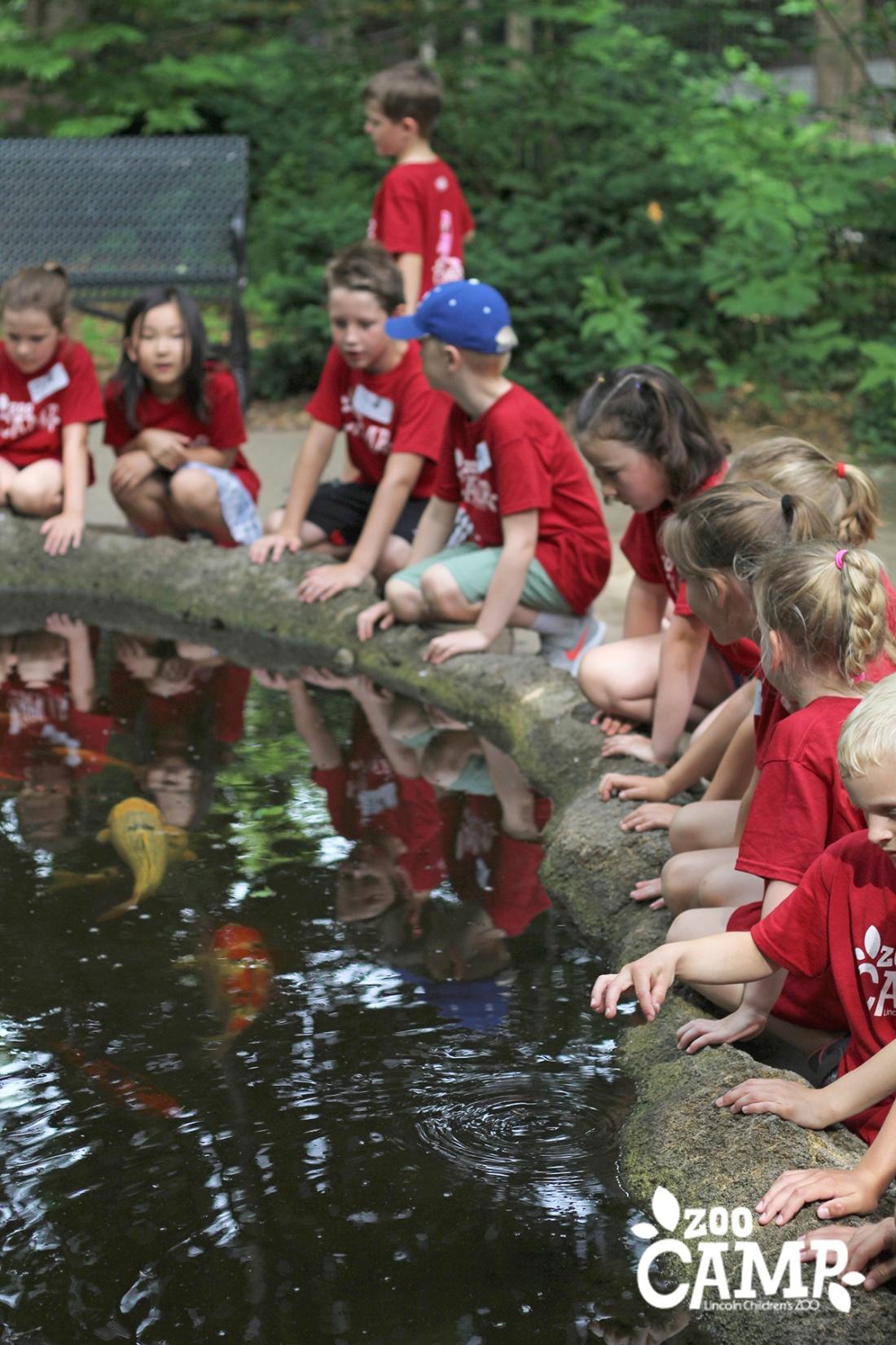 Camp_coi pond_6-7_0721