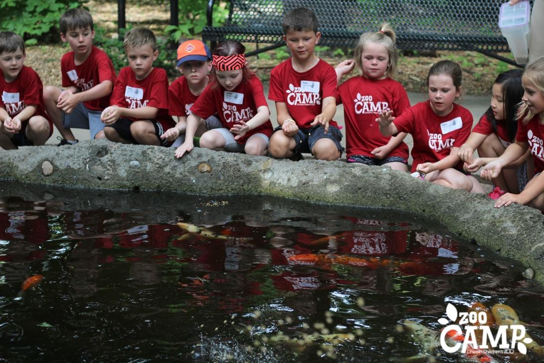Camp_coi pond_6-7_0723 copy