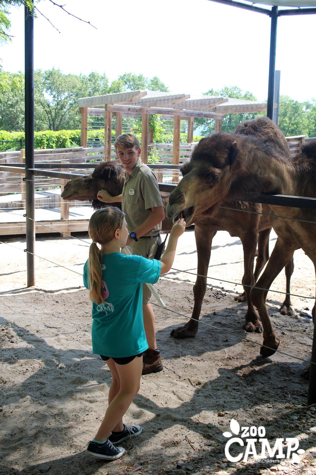 Camp_camels_8-10_3300 copy.jpg