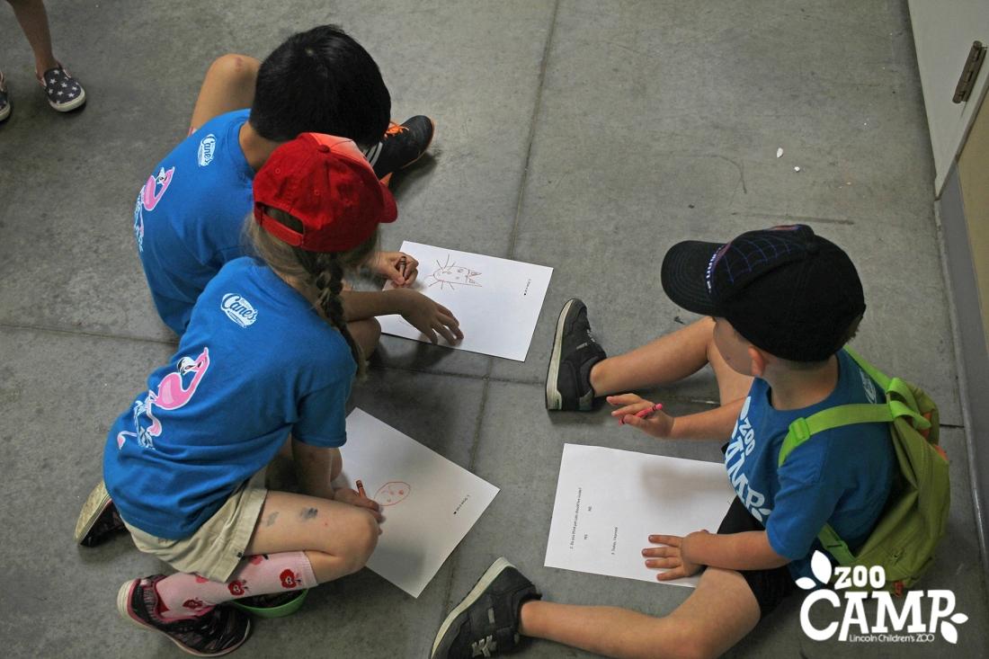 Camp_craft_4-5_3879 copy