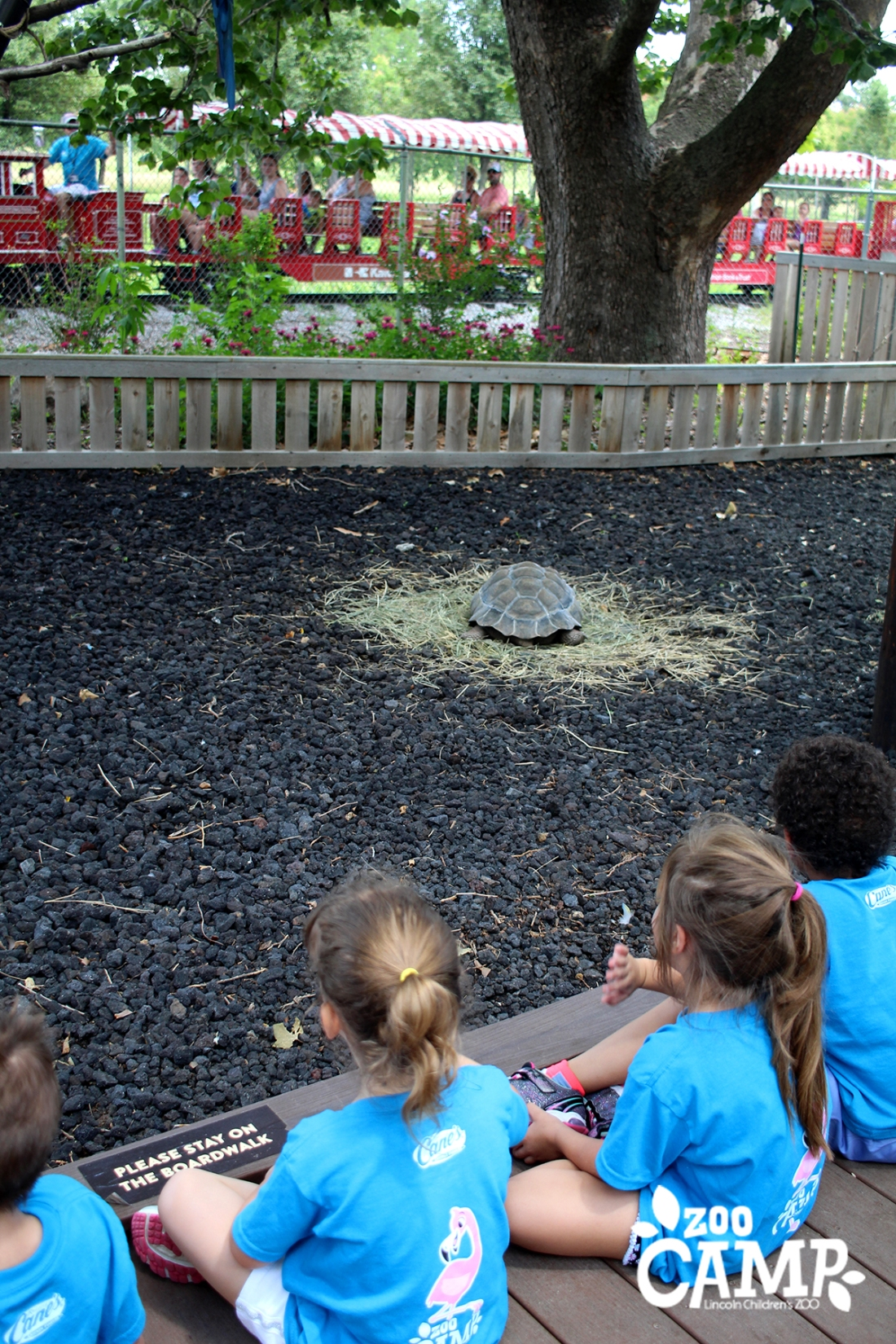 Camp_tortoise trek_4-5_2590 copy.jpg